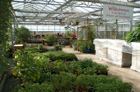 """{saisonstart} Wo in unserem Verkaufshaus """"Oase"""" über den Winter unsere Pflanzen schliefen und unsere Katalogberge lagerten…"""