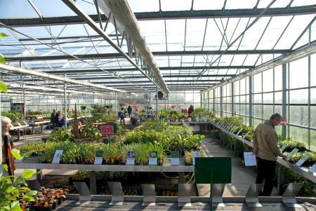{saisonstart} …ab heute können Sie hier an unseren neuen Verkaufsschildern vorbeischlendern und nach Herzenslust Pflanzen aussuchen